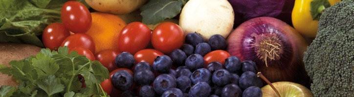 food-safety-healinthroughout