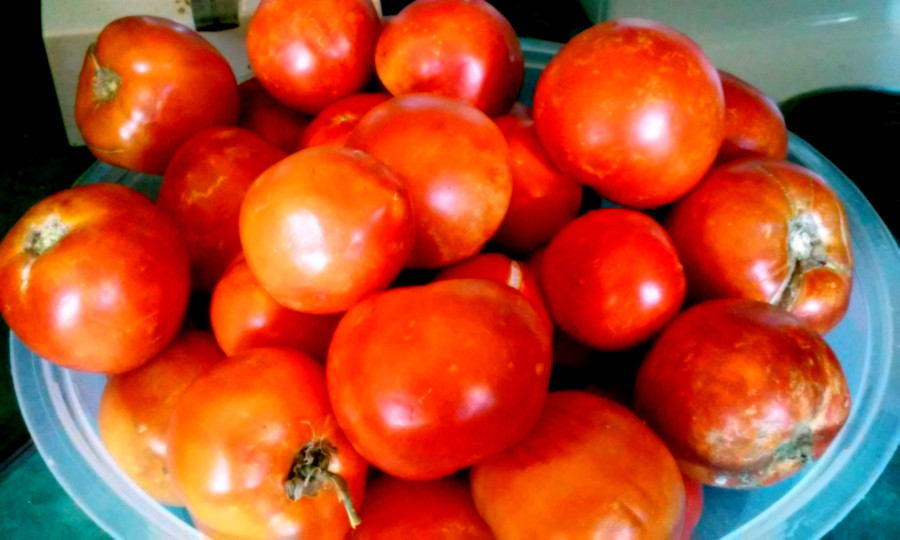 canning-tomatoes- healingthroughout