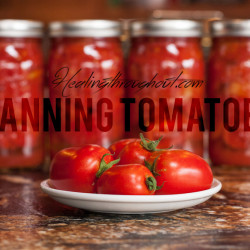 tomatoe-canning-healingthroughout copy